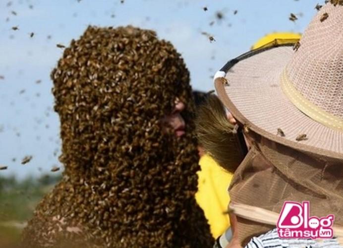Cho 450.000 con ong dot, got sach ai nay deu choang khi nhin thay...-Hinh-3