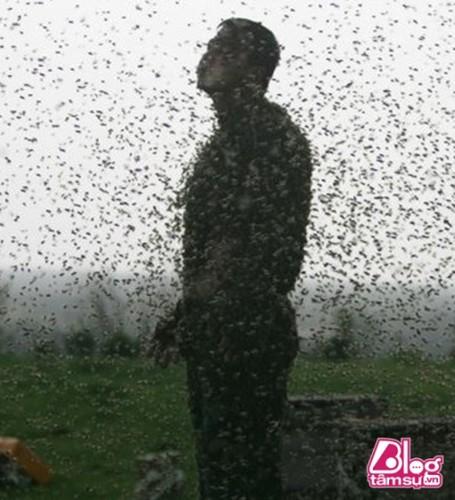 Cho 450.000 con ong dot, got sach ai nay deu choang khi nhin thay...-Hinh-6
