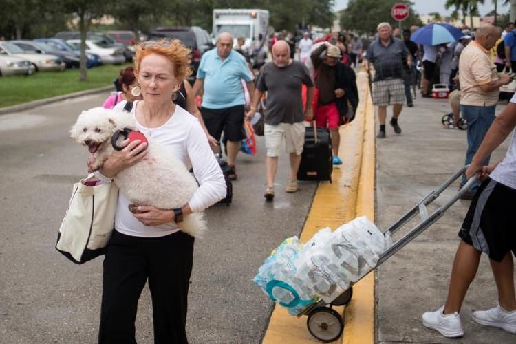 Hoi ha, bang Florida chuan bi doi pho sieu bao Irma-Hinh-3