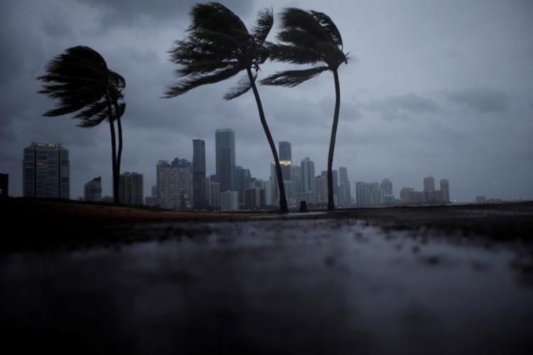 Hoi ha, bang Florida chuan bi doi pho sieu bao Irma-Hinh-4
