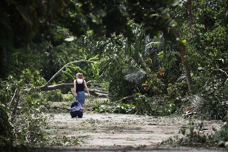Muc do tan pha khung khiep cua con bao Irma o Florida-Hinh-12