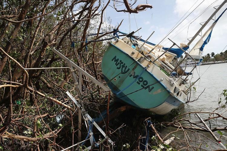 Muc do tan pha khung khiep cua con bao Irma o Florida-Hinh-2