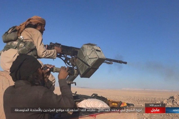Quan doi Syria chao dao o phia tay Deir Ezzor-Hinh-6