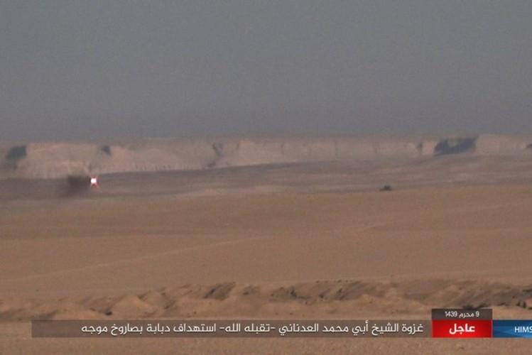 Quan doi Syria chao dao o phia tay Deir Ezzor-Hinh-8