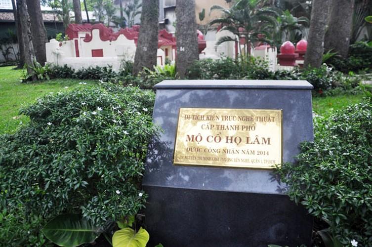 Bi an mo co ai vao cung phai cui minh o Sai Gon-Hinh-13