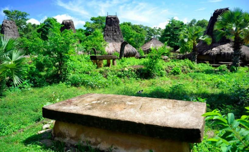 Bi an hon dao coi trong nguoi chet hon nguoi song o Indonesia-Hinh-3