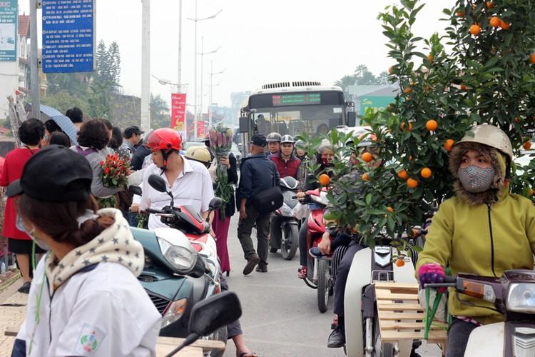 Nguoi Ha Noi chen nhau nghet tho o cho hoa ngay 29 Tet-Hinh-13