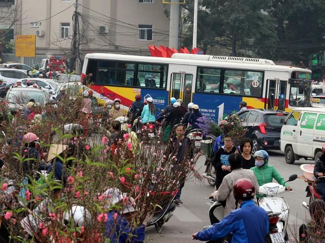 Nguoi Ha Noi chen nhau nghet tho o cho hoa ngay 29 Tet-Hinh-14