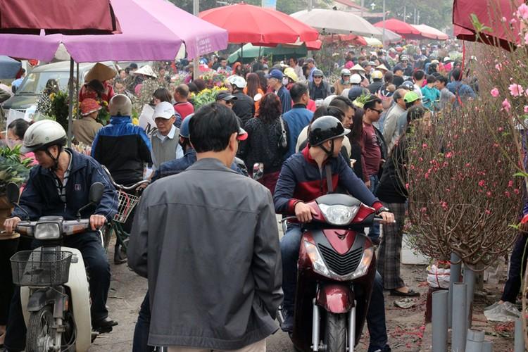 Nguoi Ha Noi chen nhau nghet tho o cho hoa ngay 29 Tet-Hinh-2