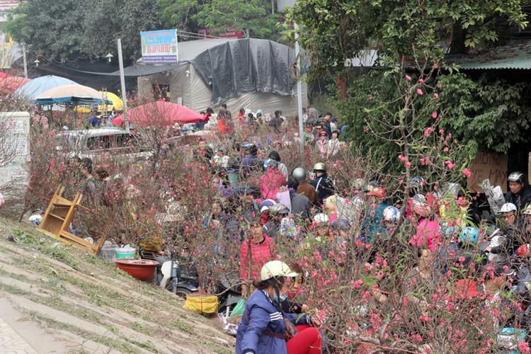 Nguoi Ha Noi chen nhau nghet tho o cho hoa ngay 29 Tet-Hinh-3