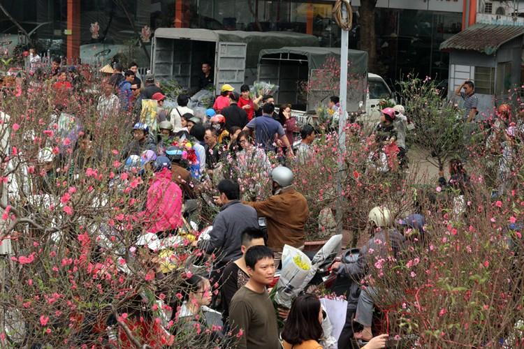 Nguoi Ha Noi chen nhau nghet tho o cho hoa ngay 29 Tet-Hinh-5