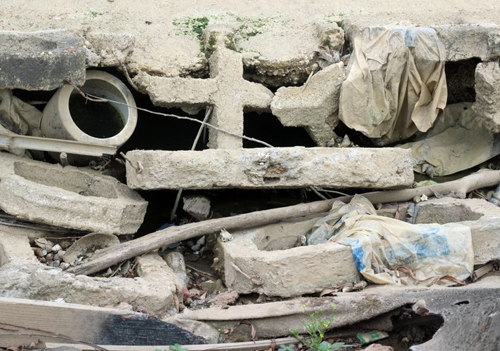 Anh: Kinh hoang canh bat huong va rac ban ngap ho Den Lu - Ha Noi-Hinh-20