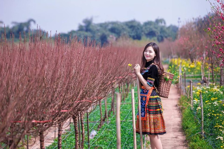"""Hot girl dan toc"" khoe sac trong vuon hoa dao Tet-Hinh-5"