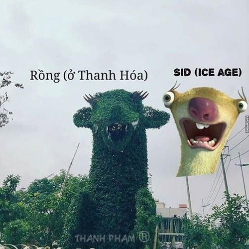 Sau rong Hai Phong, den luot rong Thanh Hoa duoc che anh-Hinh-4