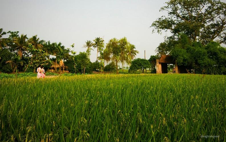 Nhung ngoi lang co thanh binh hut dan phuot nhat tai mien Bac-Hinh-4
