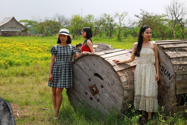 Me man thao nguyen hoa bat ngan giua long Ha Noi-Hinh-3