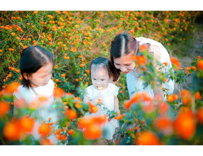 Me man thao nguyen hoa bat ngan giua long Ha Noi-Hinh-7