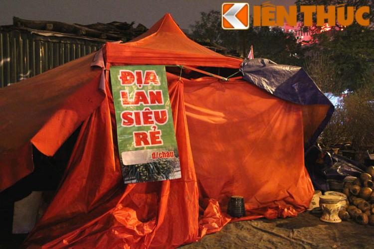 """Tieu thuong """"truc chien"""" cang bat ngu leu canh dao tram trieu-Hinh-14"""