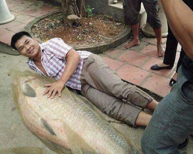 Xon xao hang loat thuy quai quy hiem dinh luoi o Viet Nam-Hinh-8