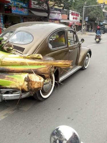 "Anh vui ve ""cong nghe"" cho hang Tet ba dao cua dan Viet-Hinh-11"