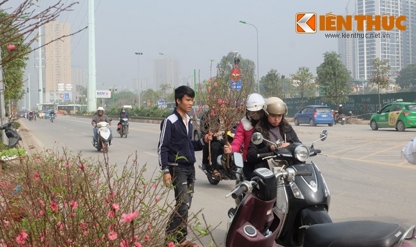 Anh: Tet ve tren nhung xe cho dao rong tren pho Ha Noi-Hinh-10