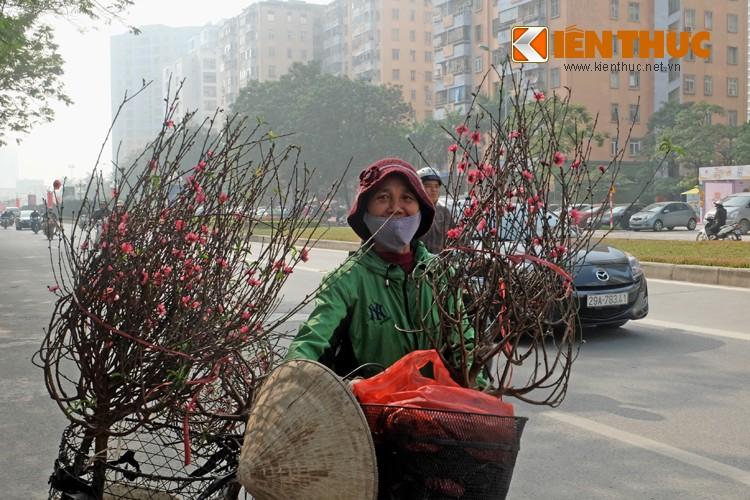 Anh: Tet ve tren nhung xe cho dao rong tren pho Ha Noi-Hinh-2