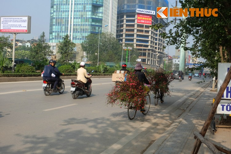 Anh: Tet ve tren nhung xe cho dao rong tren pho Ha Noi-Hinh-3