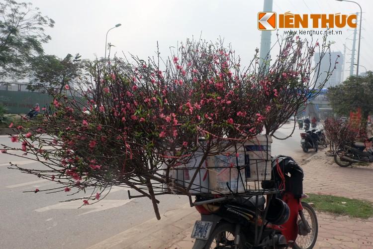 Anh: Tet ve tren nhung xe cho dao rong tren pho Ha Noi-Hinh-5