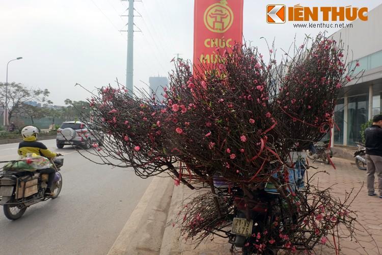 Anh: Tet ve tren nhung xe cho dao rong tren pho Ha Noi-Hinh-6