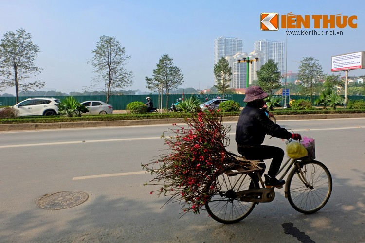 Anh: Tet ve tren nhung xe cho dao rong tren pho Ha Noi