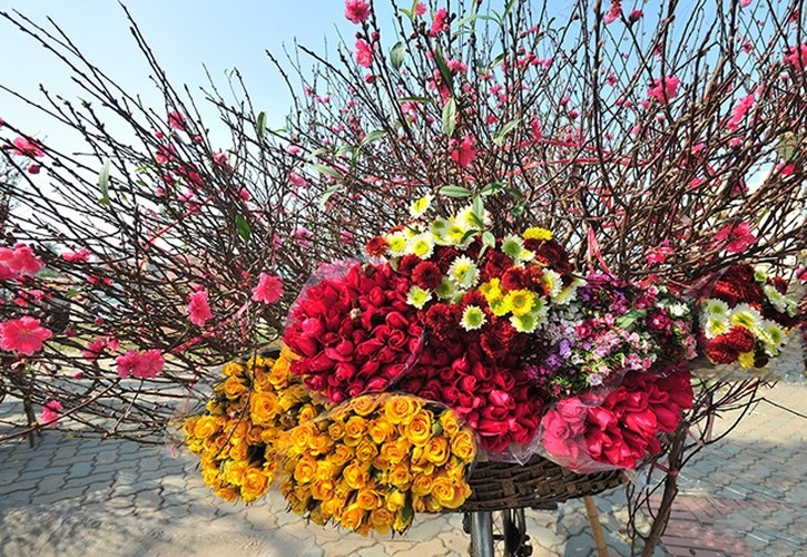 Anh dep: Nguoi Ha Noi ben hoa dao Tet-Hinh-2