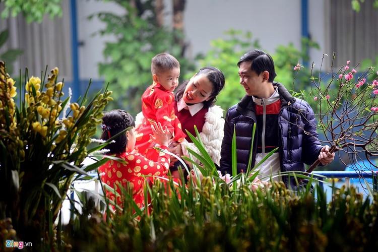 Anh dep: Nguoi Ha Noi ben hoa dao Tet-Hinh-4