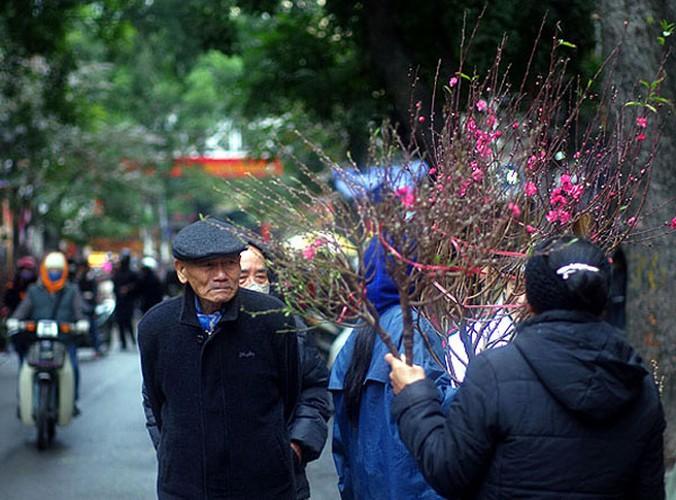 Anh dep: Nguoi Ha Noi ben hoa dao Tet-Hinh-7