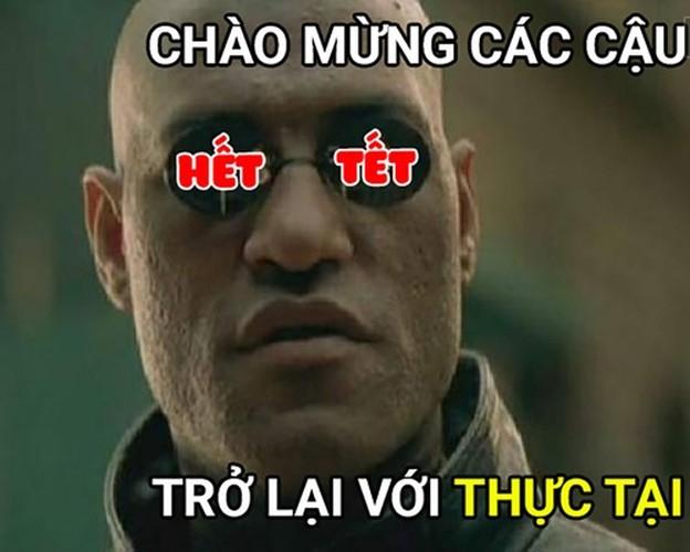 """Cuoi te ghe voi loat anh vui """"ac mong khi het Tet""""-Hinh-3"""