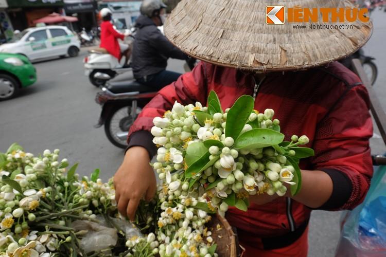 Anh: Nong nan hoa buoi ngat huong pho Ha Noi-Hinh-2
