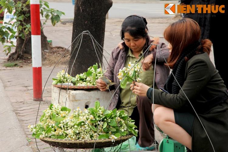 Anh: Nong nan hoa buoi ngat huong pho Ha Noi-Hinh-4