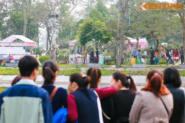 Ha Noi: Nguoi dan va vat cho xem Le hoi hoa hong Bulgaria-Hinh-5