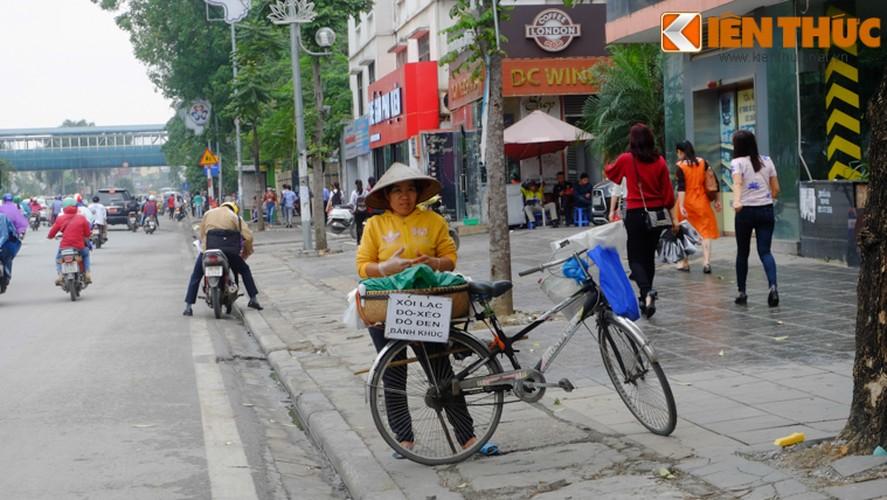 Chum anh: Hang rong dat sau vach ke via he muu sinh-Hinh-10