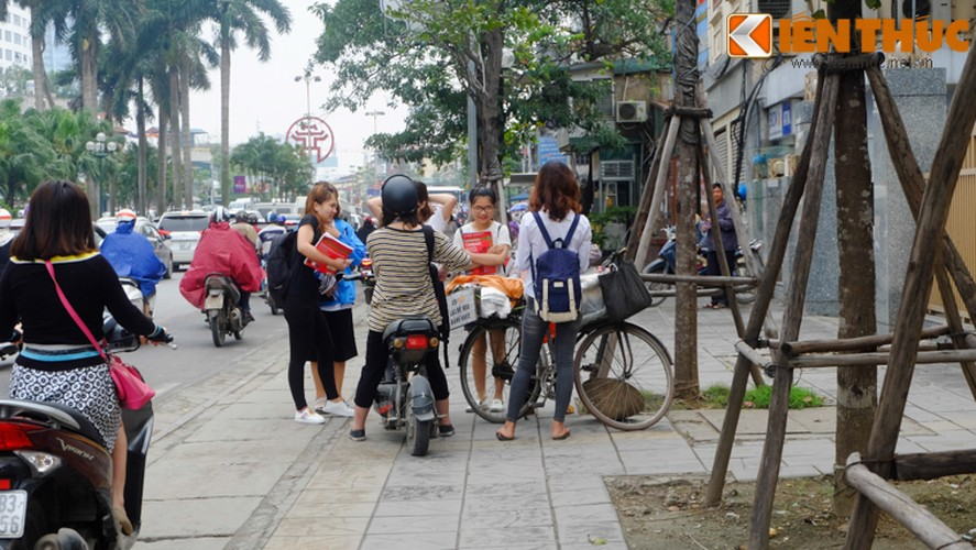 Chum anh: Hang rong dat sau vach ke via he muu sinh-Hinh-11