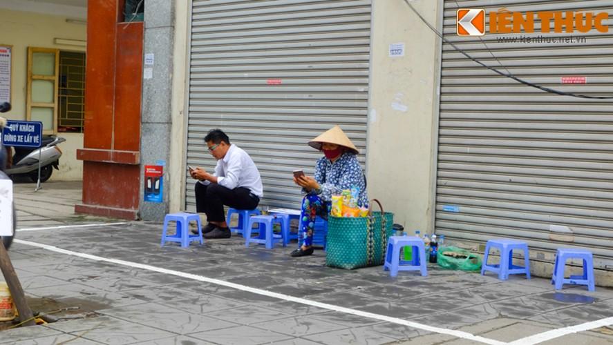 Chum anh: Hang rong dat sau vach ke via he muu sinh-Hinh-2