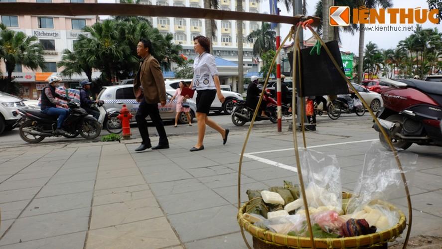 Chum anh: Hang rong dat sau vach ke via he muu sinh-Hinh-4