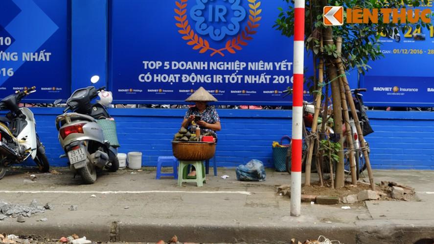 Chum anh: Hang rong dat sau vach ke via he muu sinh-Hinh-6