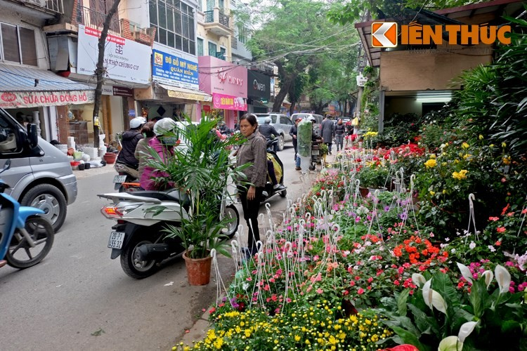 Anh: Duong pho Ha Noi la lam sau tuan le gianh lai via he-Hinh-10