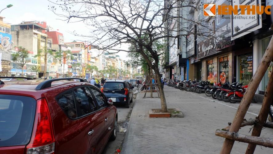 Anh: Duong pho Ha Noi la lam sau tuan le gianh lai via he-Hinh-7