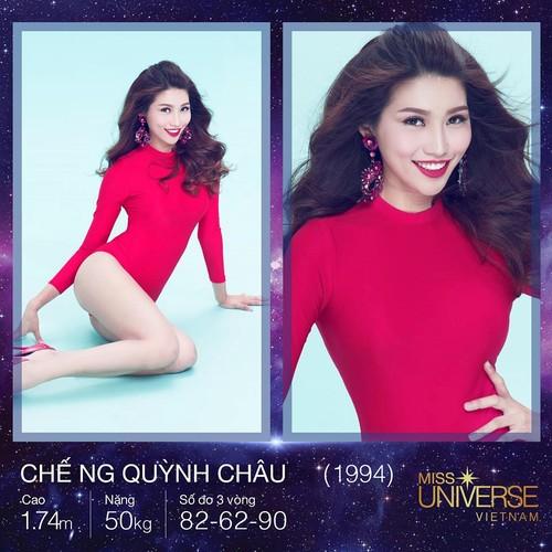 Dan chan dai o at di thi Hoa hau Hoan vu Viet Nam 2017-Hinh-3