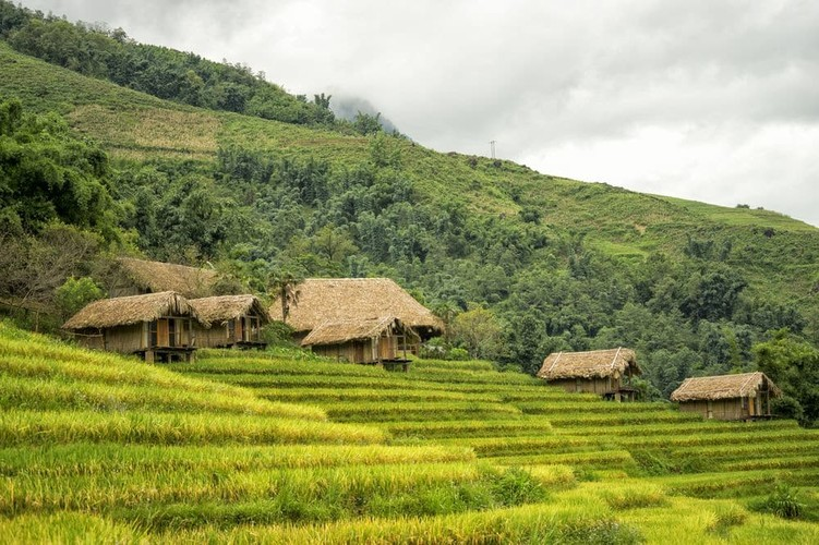 Homestay di vai buoc chan co nghin anh check-in voi dong lua chin-Hinh-4