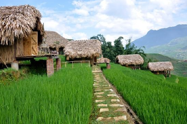 Homestay di vai buoc chan co nghin anh check-in voi dong lua chin-Hinh-8