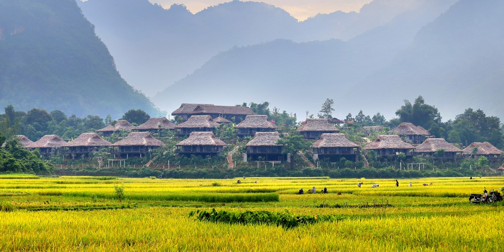 Homestay di vai buoc chan co nghin anh check-in voi dong lua chin-Hinh-9