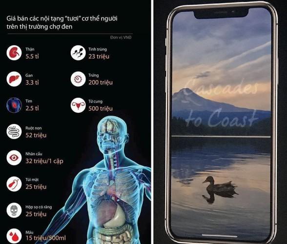 """iPhone 8 ra mat, dan mang ru nhau... """"ban than"""" kiem tien-Hinh-5"""