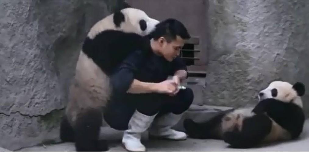 """Cong viec dang yeu nhat the gioi"" khien gioi tre me man-Hinh-7"
